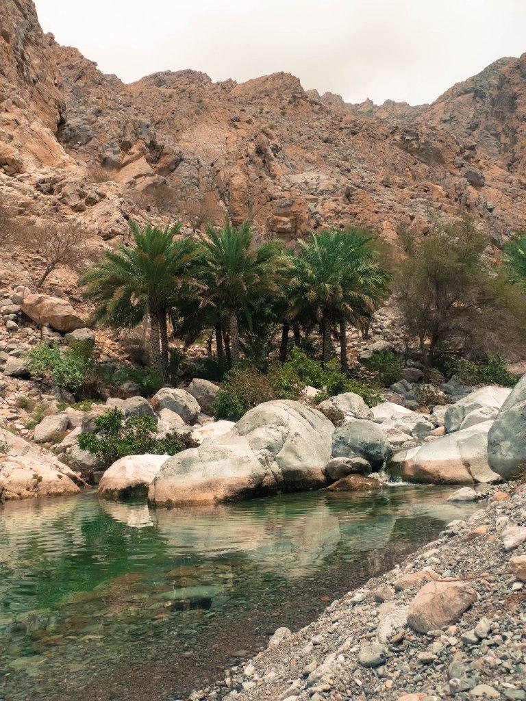 Wadi at Ain A'Thawwarah near Nahal.